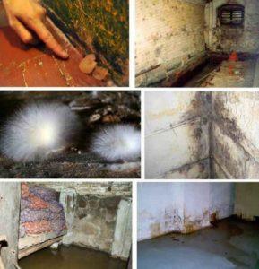 Гидроизоляция подвалов изнутри и снаружи в Москве